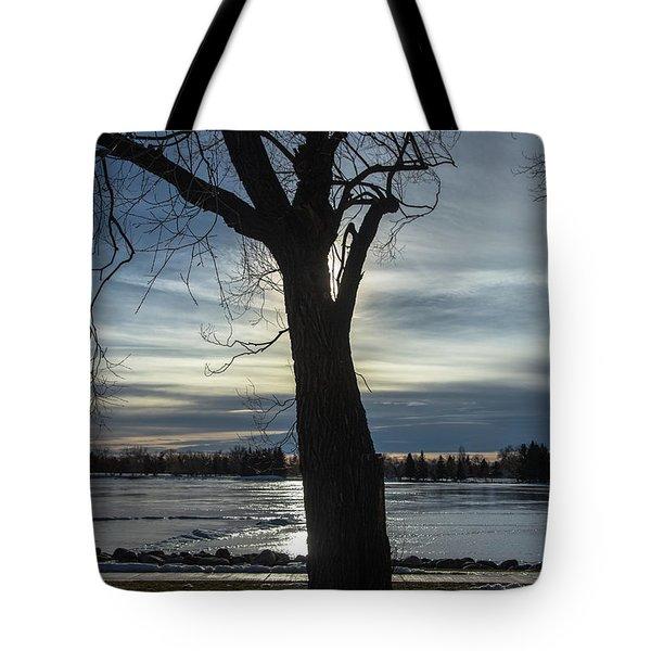 The Frozen Sun Tote Bag