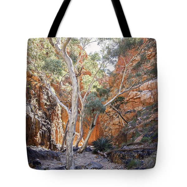 The Ghosts Of The Chasm Tote Bag