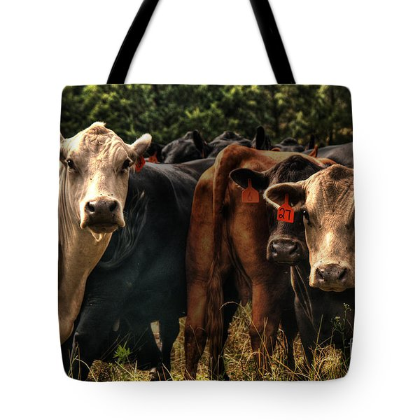 Tote Bag featuring the photograph The Girl With The Orange Earrings by William Fields