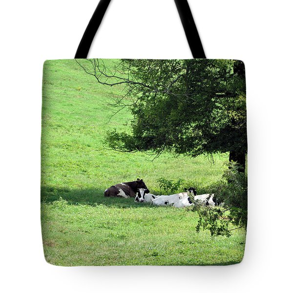 The Girls Hangout Tote Bag by Jan Amiss Photography