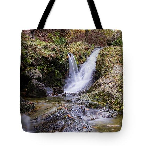 The Glen River Falls Tote Bag