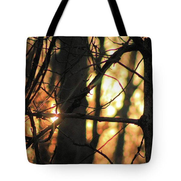 Tote Bag featuring the photograph The Golden Hour by Bruce Patrick Smith
