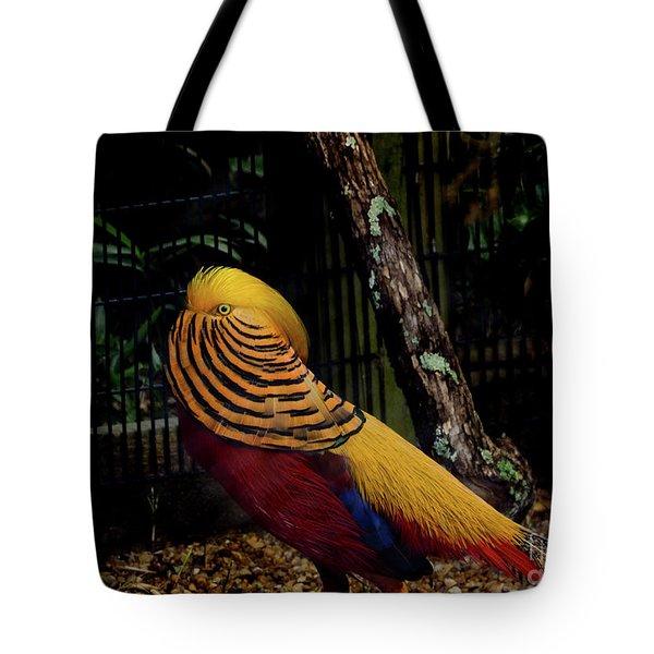 The Golden Pheasant Or Chinese Pheasant -atlanta Ga, Zoo Tote Bag