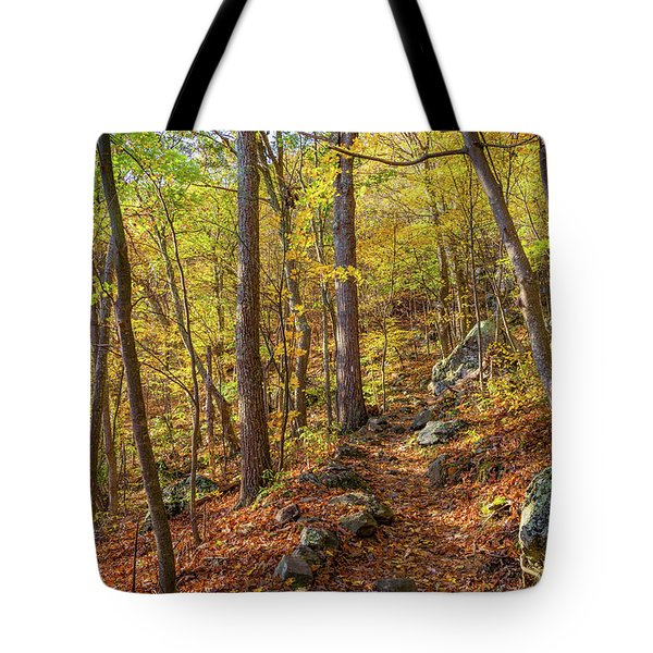 Tote Bag featuring the photograph The Golden Trail by Lori Coleman