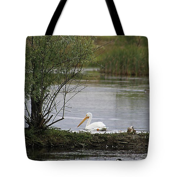Tote Bag featuring the photograph The Goose And The Pelican by Alyce Taylor