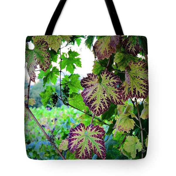 Tote Bag featuring the photograph The Grape Vine by Corinne Rhode