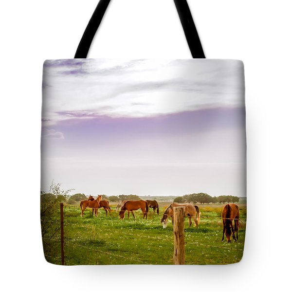 Tote Bag featuring the photograph The Grass Was Greener by Melinda Ledsome