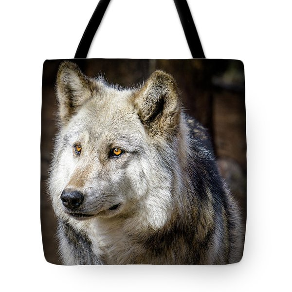 Tote Bag featuring the photograph The Gray Wolf by Teri Virbickis
