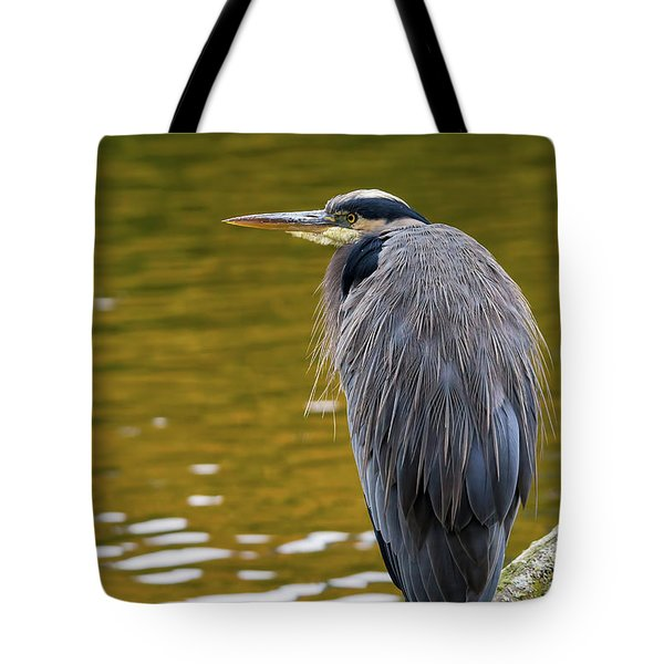The Great Blue Heron Perched On A Tree Branch Tote Bag by David Gn