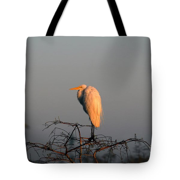 The Great Egret  Tote Bag by David Lee Thompson