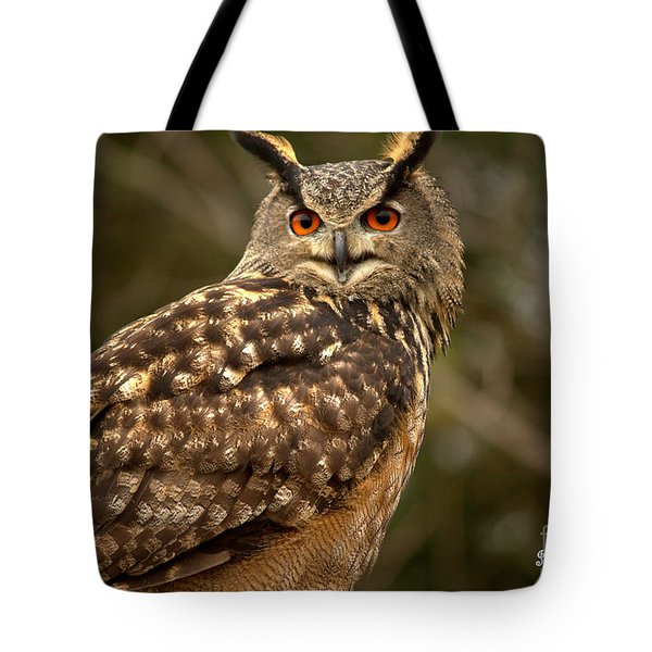 The Great Horned Owl Tote Bag