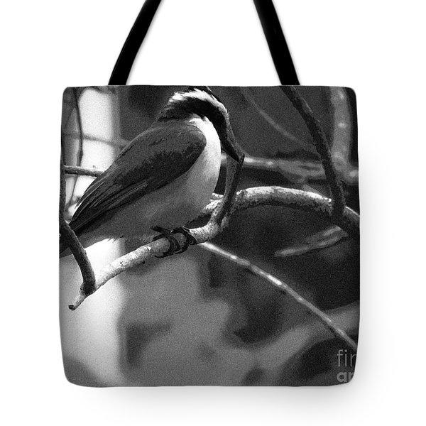 The Great Kiskadee  Tote Bag