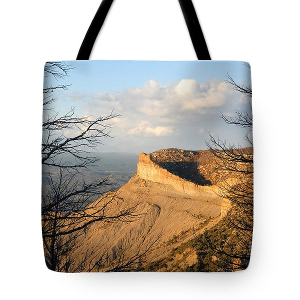 The Great Mesa Tote Bag by David Lee Thompson