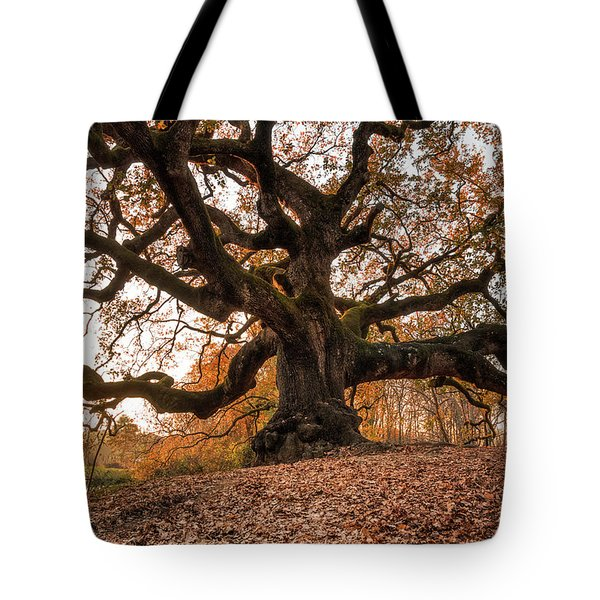 The Great Oak Tote Bag