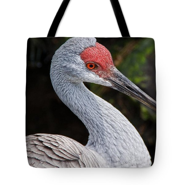 The Greater Sandhill Crane Tote Bag by Christopher Holmes