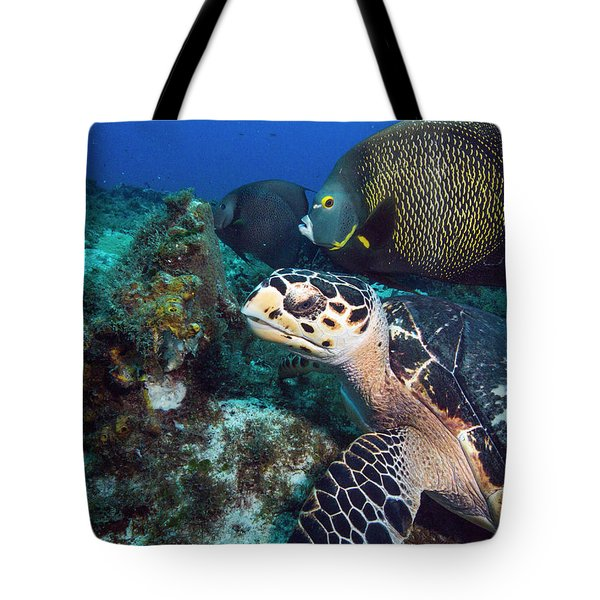 The Green Turtle And The Angelfish Tote Bag