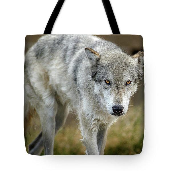 The Grey Wolf Shake Tote Bag