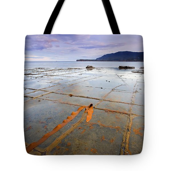 The Grid Tote Bag by Mike  Dawson