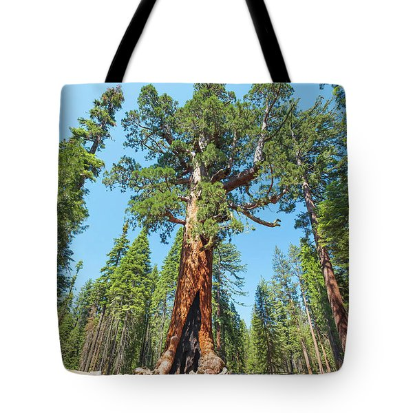 Tote Bag featuring the photograph The Grizzly Giant- by JD Mims