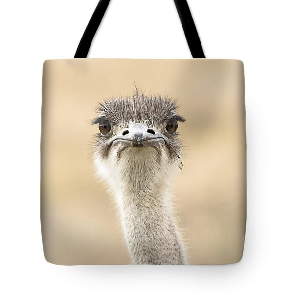 The Grump Tote Bag by Pravine Chester