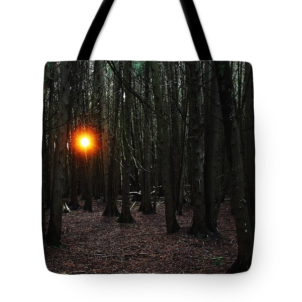Tote Bag featuring the photograph The Guiding Light by Debbie Oppermann