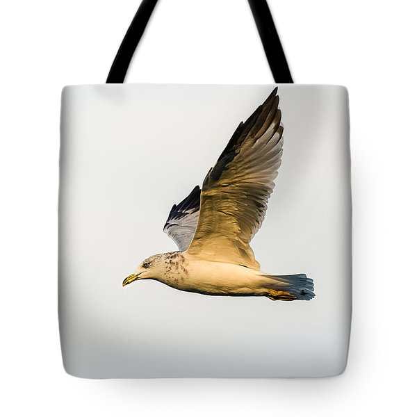 Tote Bag featuring the photograph The Gull In Flight by Yeates Photography