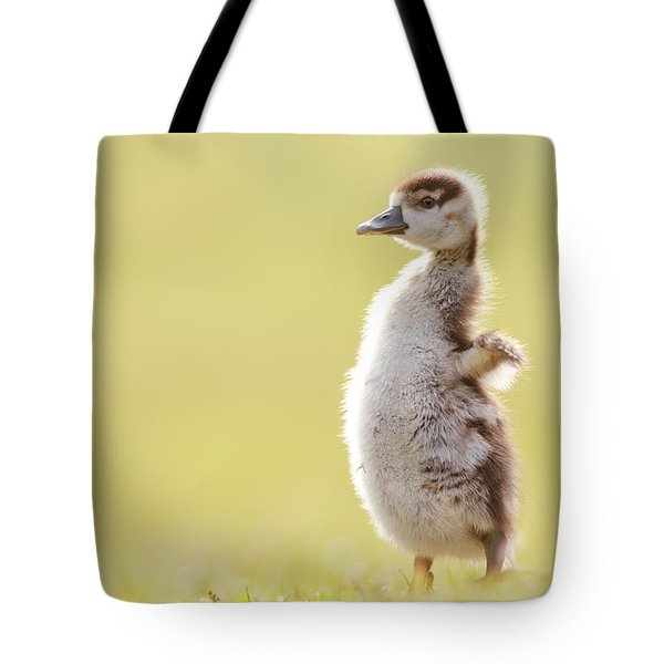 The Happy Chick - Happy Easter Tote Bag