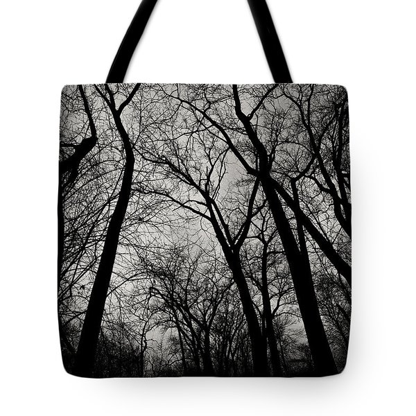 The Haunt Of Winter Tote Bag