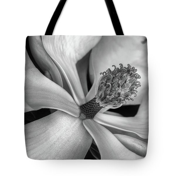 Tote Bag featuring the photograph The Heart Of The South by JC Findley