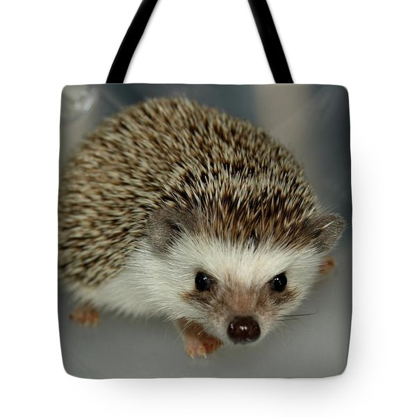 The Hedgehog Tote Bag