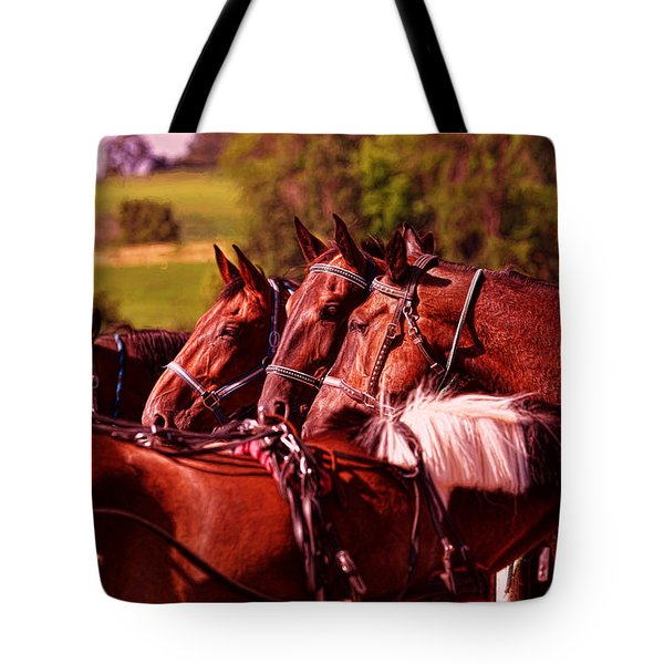 Tote Bag featuring the photograph The Herd by Anthony Baatz