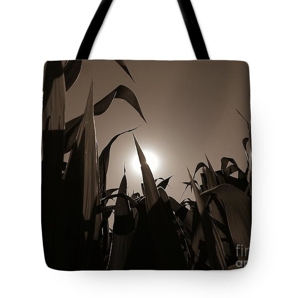 The Hiding Sun - Sepia Tote Bag