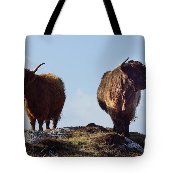 The Highland Cows Tote Bag