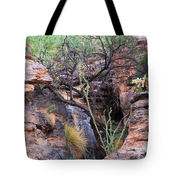 The Hole - Mount Lemmon Tote Bag