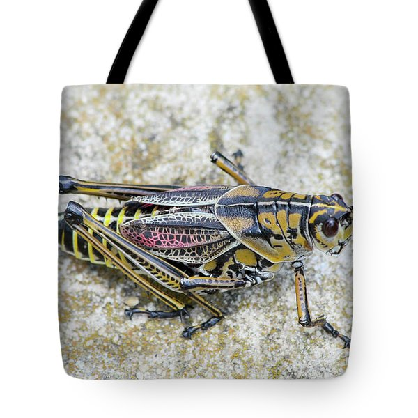 The Hopper Grasshopper Art Tote Bag by Reid Callaway