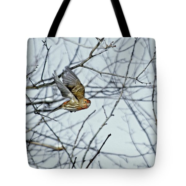 The House Finch In-flight Tote Bag