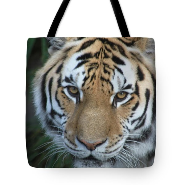 Tote Bag featuring the photograph The Hunter by Laddie Halupa