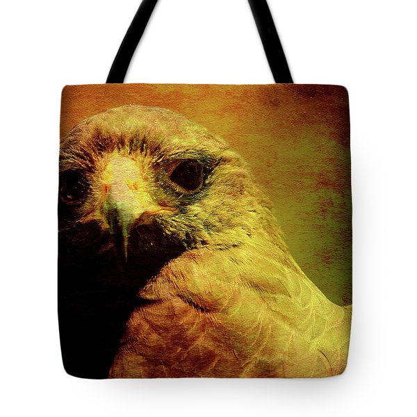 The Hunter . Portrait Of A Hawk . Square . 40d7877 Tote Bag by Wingsdomain Art and Photography