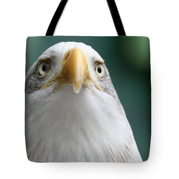 Tote Bag featuring the photograph The Hunters Stare by Laddie Halupa
