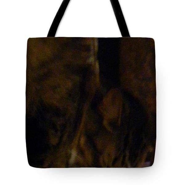 The Inn Creeper And His Pet Tote Bag