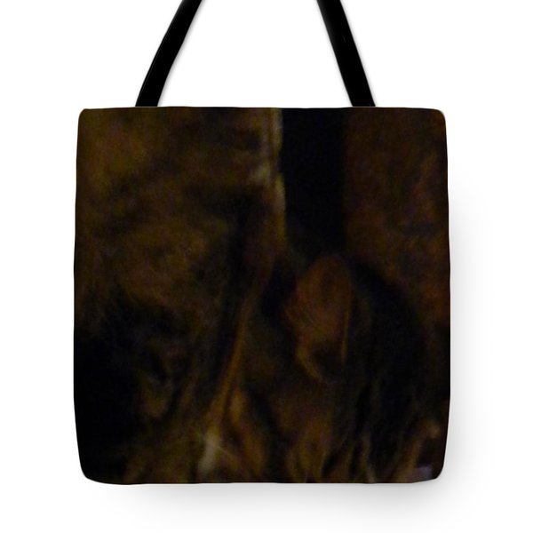 The Inn Creeper And His Pet Tote Bag