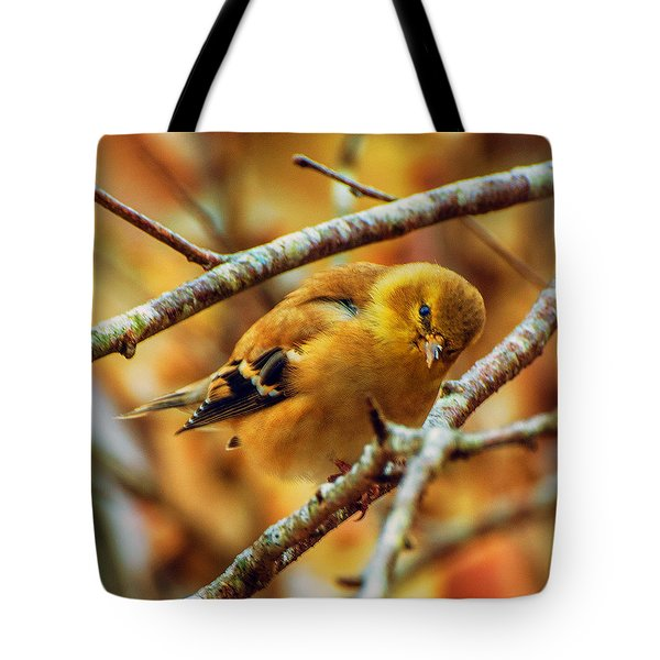 The Inquisitive Goldfinch Tote Bag