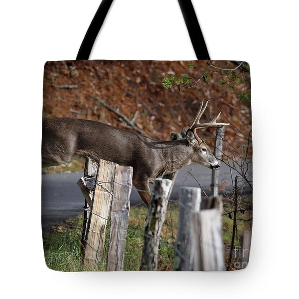 Tote Bag featuring the photograph The Jumper 2 by Douglas Stucky