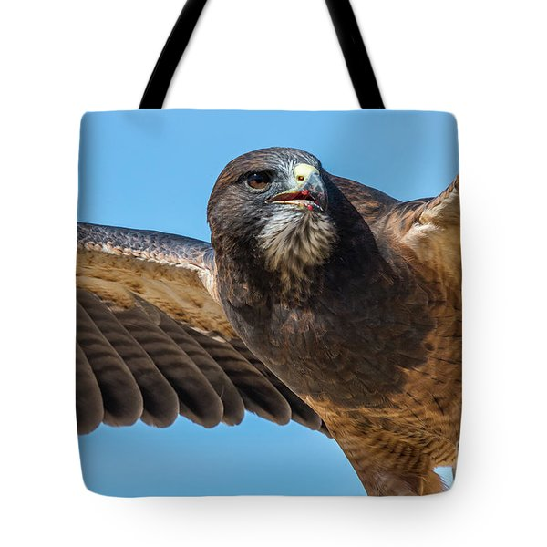 The Kill Wildlife Art By Kaylyn Franks Tote Bag