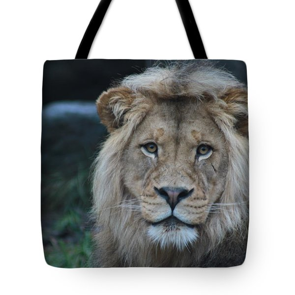 Tote Bag featuring the photograph The King by Laddie Halupa