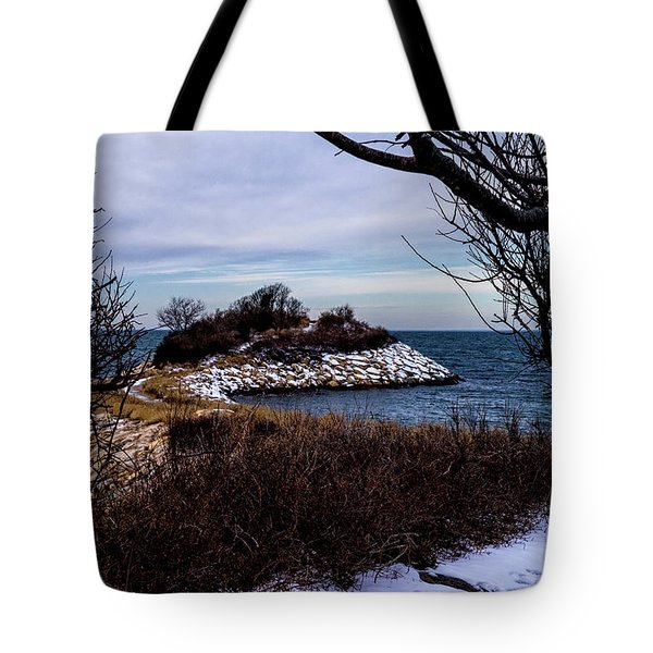 The Knob January 2016 Tote Bag