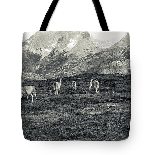Tote Bag featuring the photograph The Lamas by Andrew Matwijec
