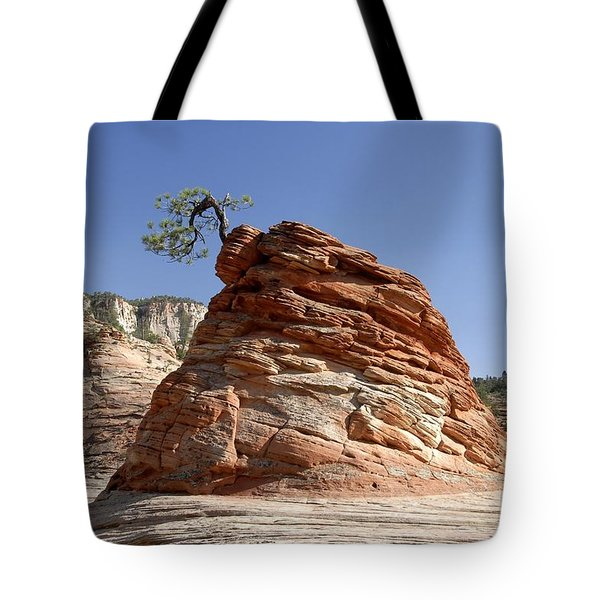 The Land Of Zion Tote Bag by David Lee Thompson