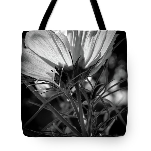 The Last Cosmos Tote Bag