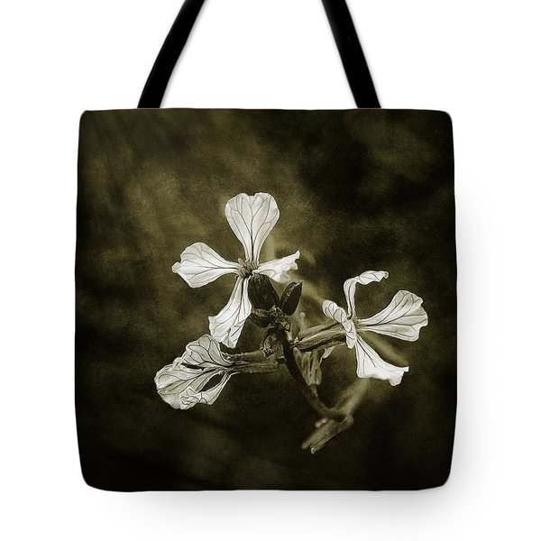 The Last Flowers Of Autumn Tote Bag